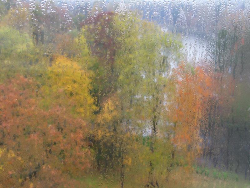 Грустила осень за окном, прозрачные роняя слезы...