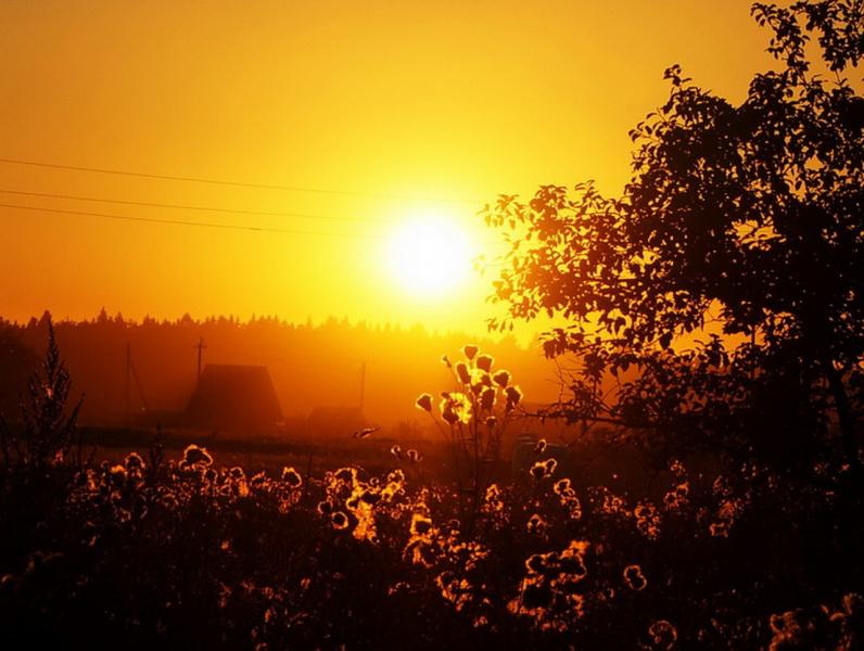 ...и золото заката мой заливает дом...