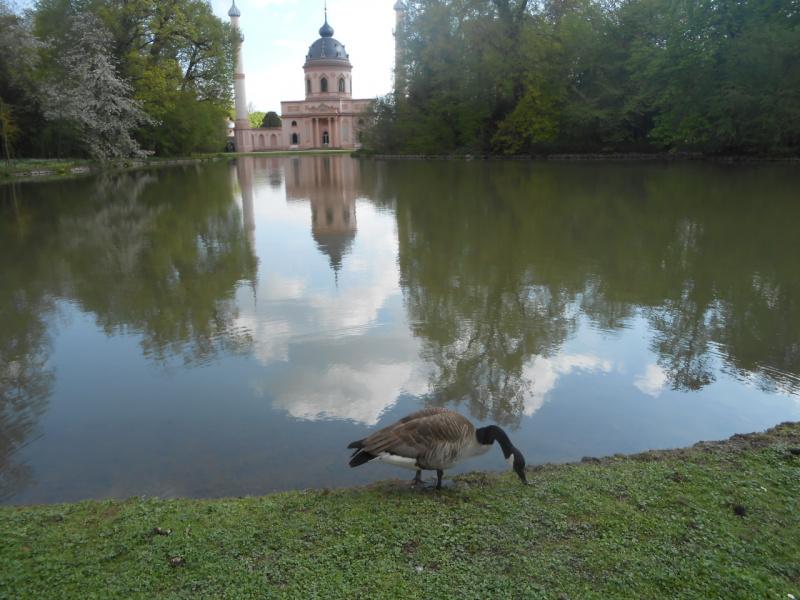 Парк в Швецинге. Германия