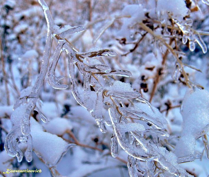 ледяная рапсодия