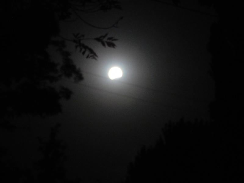 Луна уселась в проводах 07.08.2017