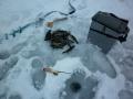 1464. Открыл сезон первого льда на пруду!