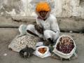 Индийское средство  от ранней седины