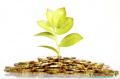 Талисман для привлечения денег – ритуал на благополучие.