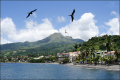 Трагедия Мартиники