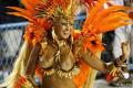 1235739330_rio_carnival06