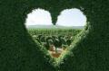Динамическая медитация  на сердце