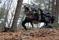 «Робот-мул» LS3