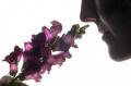 Познавательные факты о самых полезных запахах!!!