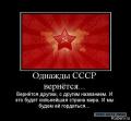Новороссии - строить государство социальной справедливости!