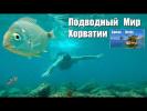 Подводный Мир Хорватии