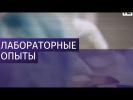 США обвинили в секретных экспериментах над людьми в Грузии