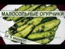 Малосольные огурцы - самый быстрый рецепт приготовления огурчиков