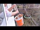 СМЕШНЫЕ ЖИВОТНЫЕ 2018 Прикольные Котики и Собаки Видео Приколы с животными 2018