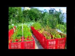 Креативные идеи-грядки для огорода