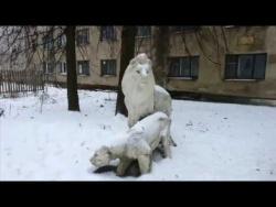 Город Пучеж в 21 веке . зимний пейзаж города.