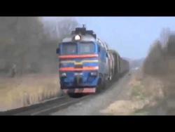 Собака-экстремал играет с судьбой под колесами поезда!
