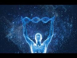 Рецепты галлюциногенных грибов, фермент бессмертия и другие новости на QWERTY
