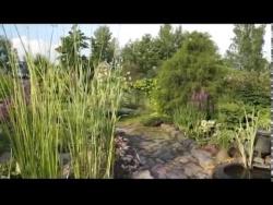 Частный сад Ирины Пыжиковой возле Павловска под Санкт-Петербургом