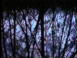 Relax Video: EARTHDANCE. Part 5