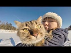 Прикольные видео с животными 2018 Милые и забавные собаки и кошки Крутая подборка про животных