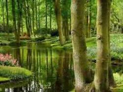 Blue Planet...(beautiful nature)...music Igor Krutoi
