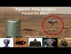 Possible Alien Skeleton Found On Mars?