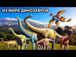 Новое открытие в мире динозавров мелового периода. Новости науки, интересные факты, научные открытия