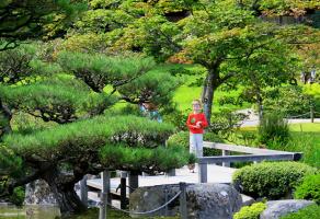 Лето в Японском саду Сиэттла (серия)