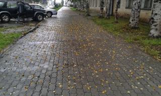 Лето- это приближающася осень...