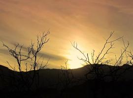Вечерний пейзаж пустыни