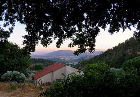 Тихий вечер в Верхней Галилее (+ 2 снимка)