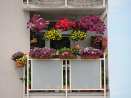 Мой южный балкон.