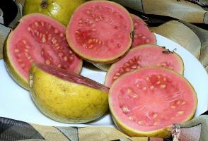 плоды гуявы...