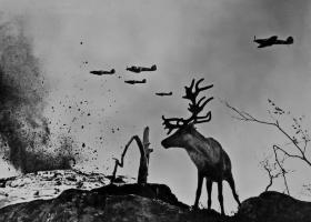 Олень Яша на войне