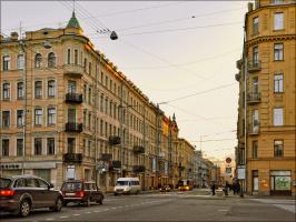 На Суворовском проспекте.