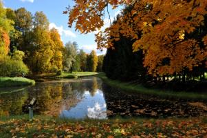 Осенняя прогулка