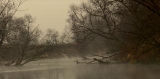 «Над рекою туман тихо стелется»