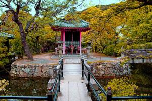 Осень в Японском саду