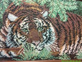 тигр на отдыхе.автор:Юлия