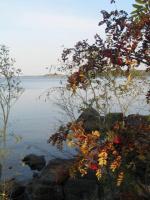 Осенний сюжет