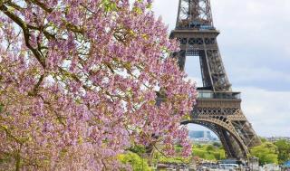 Весна в Париже