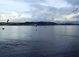 Холодное норвежское море