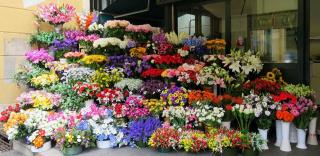 Лето - это море цветов...