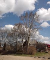 Ветры весенние 2. Моя деревенька
