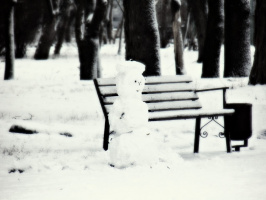 Зимой еще снег,а весной уже лужа.