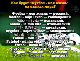 Футбол - моя жизнь!