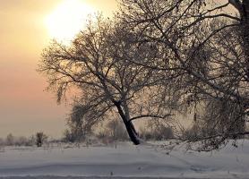 Краски зимнего вечера