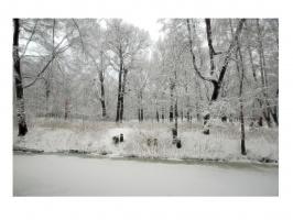 Акварель от зимы
