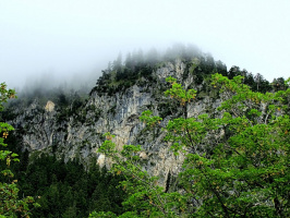 Опускающийся туман